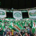 Green Brigade (12)
