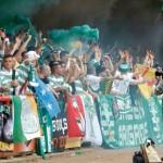Green Brigade (13)