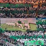 Green Brigade (30)