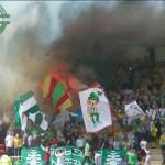 Green Brigade (48)