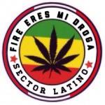 Sector Latino Rasta